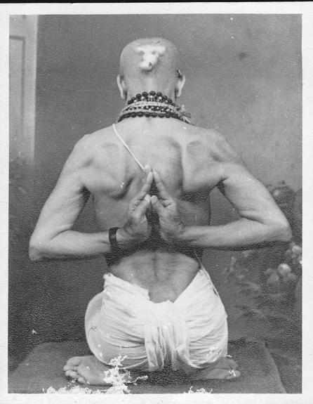 "Ashtanga Yoga ""Vinyasa Count"" Half Primary"